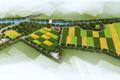 杜村寺人工湿地改建工程